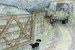 Petra Brown Illustration - petra, brown, petra brown, watercolour, paint, painted, commercial, traditional, trade, picture book, picturebook, animals, farm, farmyard, dogs, winter, landscapes, trucks, tractors, snowing, snow, snowy