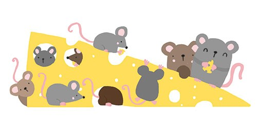 Damien & Lisa Barlow Illustration - Damien, Lisa, Damien & Lisa, Barlow, digital, photoshop, board book, trade, mass market, greetings cards, gift wrap, stationary, fiction, picture book, surface pattern design, colourful, textured, illustrator, sweet, cute, young, mice, cheese, eating, yum