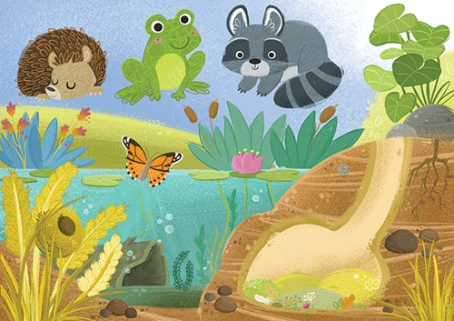 Eva Maria Gey Illustration - eva maria gey, commercial, educational, mass market, digital, YA, young reader, colour, colourful, digital, photoshop, bright, cute, sweet, wildlife, nature, pond, water, bank, plants, hedgehog, frog, racoon, animals, wild, butterfly, lilypads,underwater