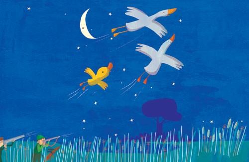 Giuditta Gaviraghi Illustration - giuditta, gaviraghi, guiditta gaviraghi, acrylic, paint, painted, traditional, commercial, picture book, picturebook, men, man, person, figure, colour, colourful, sweet, cute, animals,birds, flying, night time, moon, stars, trees