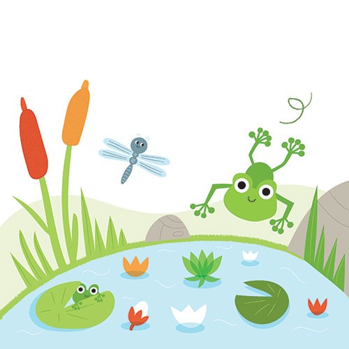 Isabel Aniel Illustration - sabel aniel, isabel, aniel, digital, photoshop, illustrator, commercial, picture book, novelty, board book, sweet, cute, young, animals, frog, pond, lily, dragonfly, plants, weeds, reeds, garden, rocks, stones, flowers, nature