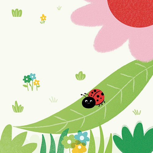 Isabel Aniel Illustration - sabel aniel, isabel, aniel, digital, photoshop, illustrator, commercial, picture book, novelty, board book, sweet, cute, young, animals, ladybird, bug, insect, leaf, flower, nature, outside, wildlife