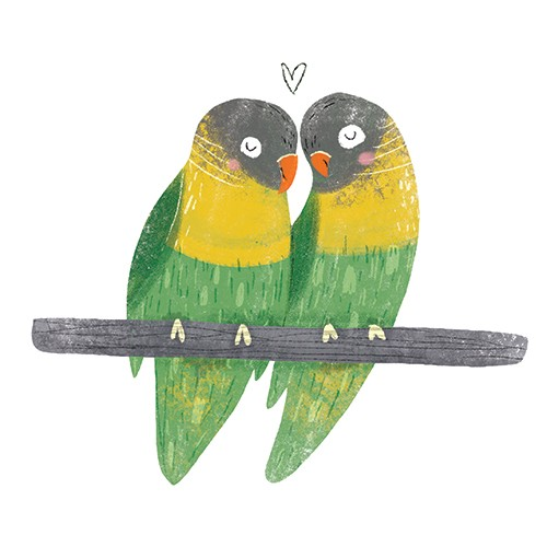 Louise Wright Illustration - louise, wright, louise wright, texture, mixed media, traditional, digital, photoshop, illustrator, trade, mass market, picture book, animal, bird, colour, cute, couple, love, heart, parrot