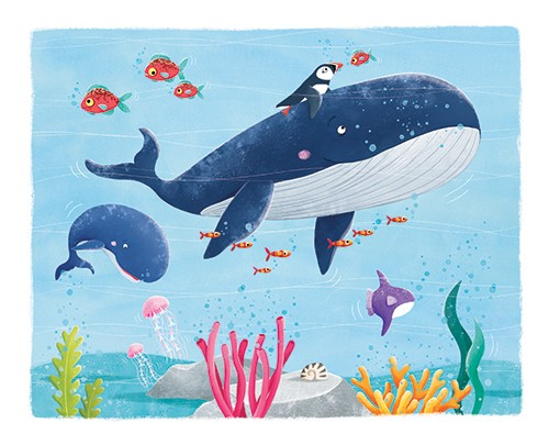 Marta Costa Illustration - marta, costa, marta costa, digital, commercial, educational, picture book, young reader, YA, colourful, colour, cute, sweet, animals, whale, fish, sea