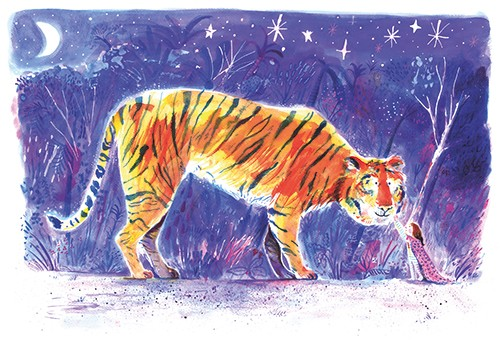 Stef Murphy Illustration - stef, murphy, stef murphy, illustrator, pencil, traditional, digital, mixed media, texture, colour, colourful, animal, wild, jungle, tiger, night, sky, stars, moon, nature, trees, characters, girl, friends, love, cute, sweet,