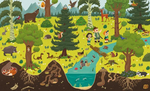 Sara Mateos Illustration - sara, mateos, sara mateos, illustrator, digital, photoshop, YA, young reader, colour, colourful, bright, forest, woods, trees, wildlife, woodland, animals, badger, ducks, foxes, exploring, bear, honey, squirrel, deer, bird, family