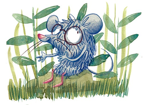 Tamara Anegon Illustration - tamara, anegon, tamara anegon, trade, commercial, picture book, board book, painted, hand drawn, traditional, acrylic, painterly, colour, young reader, colourful, animals, shrew, leonard, character, wild, wildlife, nature, glasses, grass, leaves, rocks, s