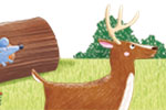 Marta Costa Illustration - marta, costa, marta costa, pencil, digital, commercial, educational, picture book, young reader, YA, colourful, colour, cute, sweet, animals, deer, crow, friends, mouse, tortoise, log, woods, nature, grass, plants, rocks, mushrooms, bushes,